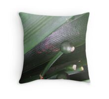 """CLIVA  """" ADORABLE """" SEED PODS  Throw Pillow"""