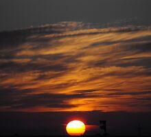 Desert Dawn by Howard Lorenz