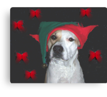 elf supervisor Canvas Print