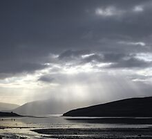 Dingle Bay by Paul Finnegan