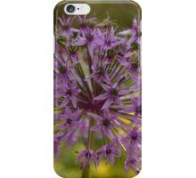Allium firework  iPhone Case/Skin