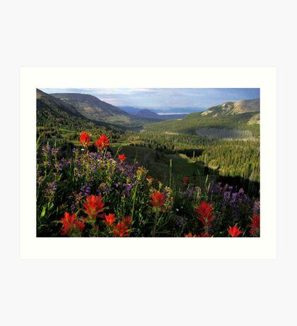 Bighorn Pass Art Print