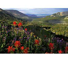Bighorn Pass Photographic Print