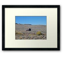 Colorado real estate Framed Print