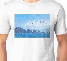 anacapa mist Unisex T-Shirt
