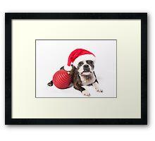 Merry Christmas 2009! Framed Print