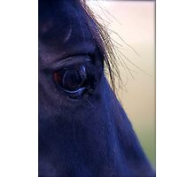 Blue Touch Photographic Print