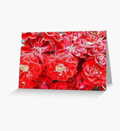 Dashing Roses Greeting Card