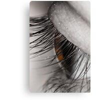 Macro of an eye Canvas Print