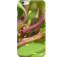 Vibrant Rose Stems iPhone Case/Skin
