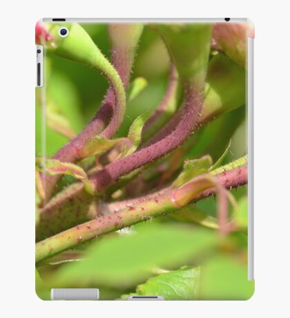 Vibrant Rose Stems iPad Case/Skin