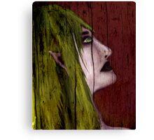 Elf In Wood Canvas Print