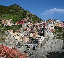 Riomaggiore, Cinque Terre, Italy by Lanis Rossi