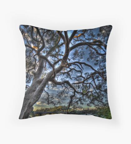 Como PG 1 Throw Pillow
