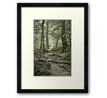 Trail To The Light Framed Print