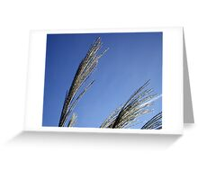 Secrets in the wind Greeting Card