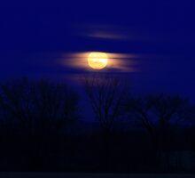 December Moon by Deborah  Benoit