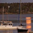 August Moon over Moscongus Bay, Maine by Anthony  Romano