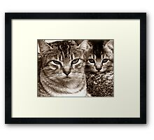 portrait of a mother and daughter Framed Print