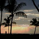 Maui Sunset by David Edwards