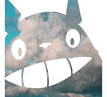 Troll in the Sky - My Neighborn Totoro Photographic Print