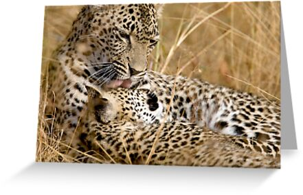 Karula and cub by Michael  Moss