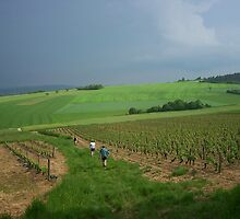 a vast France landscape by beautifulscenes