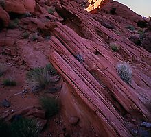 Striated Rock, Valley of Fire, Nevada by Tom Fant