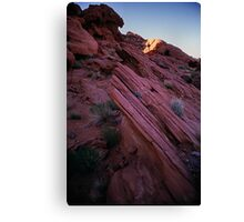 Striated Rock, Valley of Fire, Nevada Canvas Print
