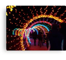 Festival of Lights Earthworm Tunnel Canvas Print