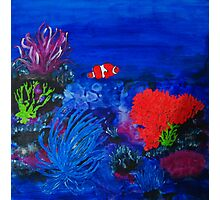 Coral and Clown Photographic Print