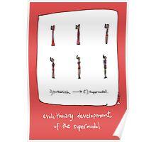 Evolutionary development of a Supermodel Poster