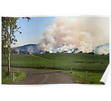 Bush Fire Poster
