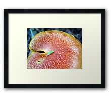 measure this... Framed Print