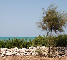Puglia Coastal Scenery  by jojobob