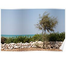 Puglia Coastal Scenery  Poster