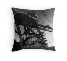Crane Reflection Throw Pillow