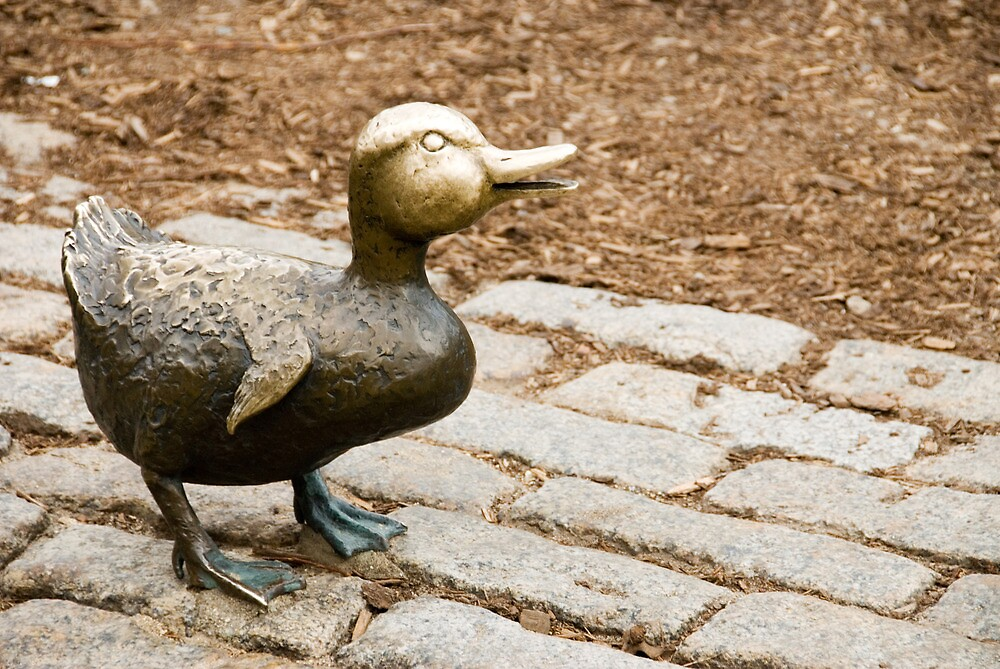 Little Bronze Duck by Craig Goldsmith