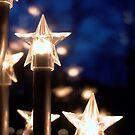 Christmas Stars by Rowan  Lewgalon