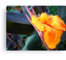Yellow -Red flower. Canvas Print