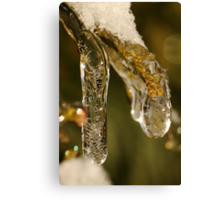 Jewel of Ice 1 Canvas Print