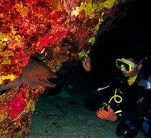 A giant moray greeting a diver in a cave by Aziz T. Saltik