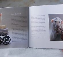 Ellen´s wonderful book - The Rat Pack by LadyE