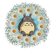 Totoro n Daisies by bandreaNRG