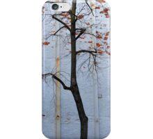 Boston, MA: Rogue Tree iPhone Case/Skin