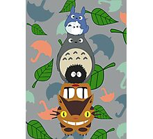 Totem Totoro - BEST FOR SAMSUNG CASES Photographic Print