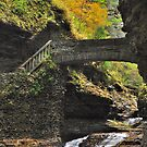 New York's Watkins Glen VIII by PJS15204