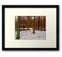 Winter Alburn Framed Print