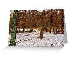 Winter Alburn Greeting Card
