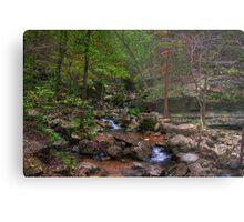 Blanchard Springs Little Stream Metal Print